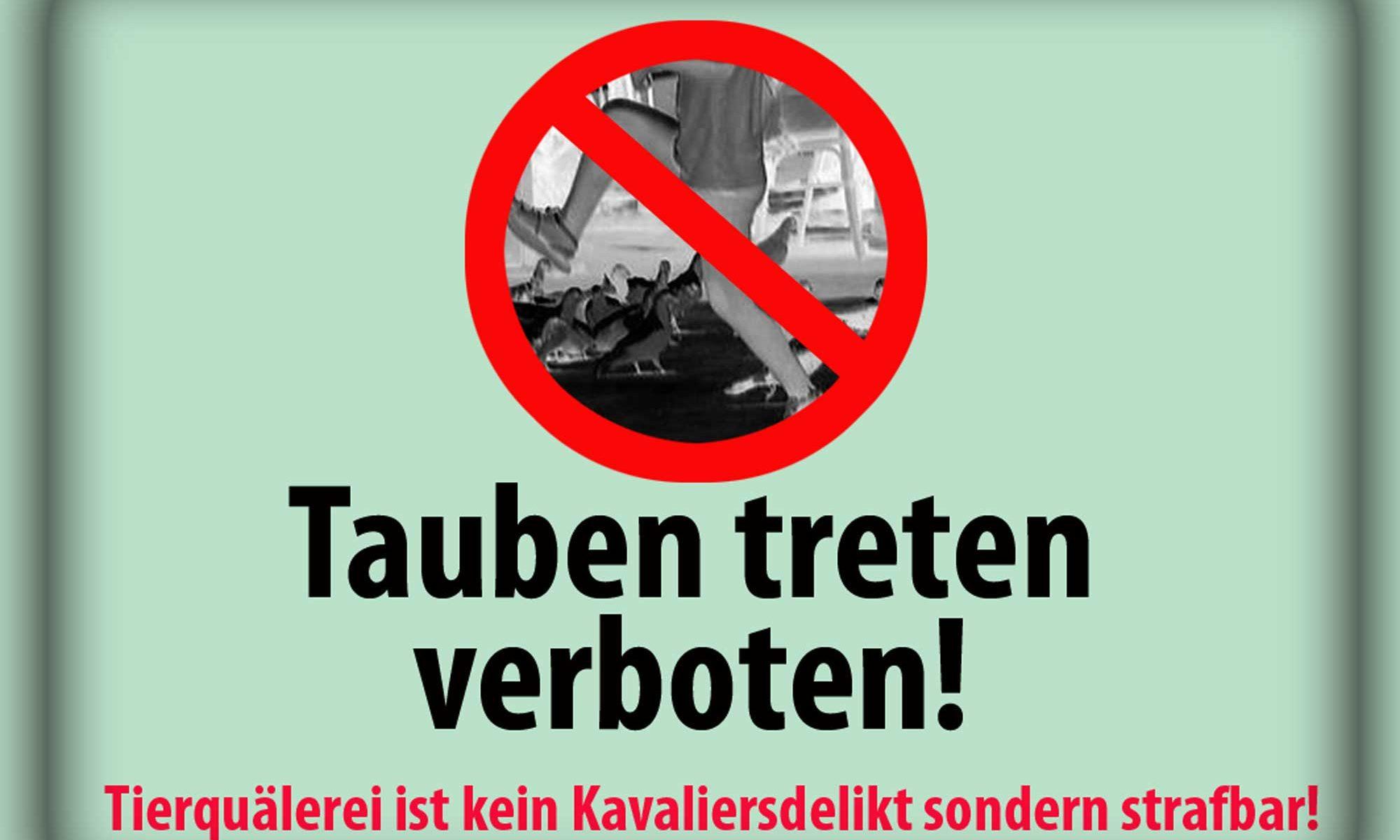 Gewalt gegen Tauben verbieten!