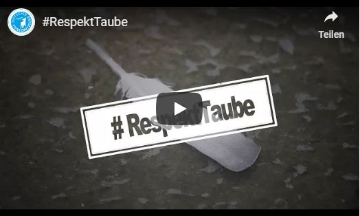 Video zur Kampagne #Respekttaube