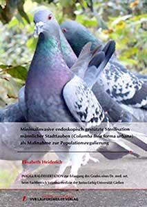 Elisabeth Heidrich: Minimalinvasive endoskopisch gestützte Sterilisation männlicher Stadttauben